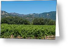 Calistoga Valley 2 Greeting Card