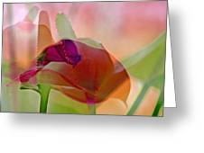 Calla Greeting Card