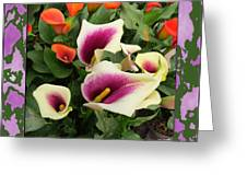 Calla Lilies Bloom Greeting Card
