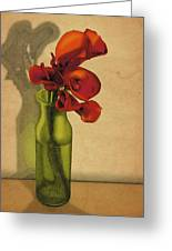 Calla Lilies In Bloom Greeting Card