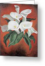 Calla Lilies On A Red Background Greeting Card