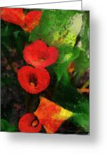 Calla Lilies Photo Art 03 Greeting Card by Thomas Woolworth