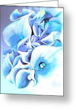 Calla Lilly So Soft Lilac And Blue Greeting Card
