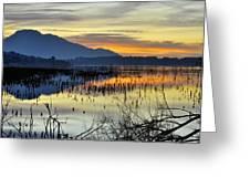 Calm At The Lake Greeting Card