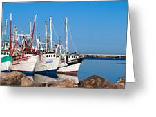 Calm Harbor Greeting Card