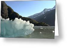 Calved Ice Alaska Greeting Card