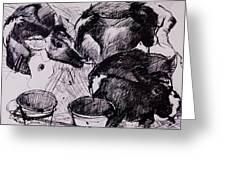 Calves, Damp, Newborn, 1978 Pen & Ink On Paper Greeting Card