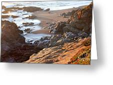 Cambria Coastline Greeting Card by Michael Rock