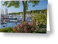 Camden Harbor Spring Greeting Card by Susan Cole Kelly