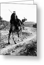 Camel Rider Greeting Card