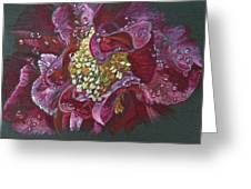 Camellia Rain Greeting Card