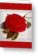 Camellia Spectacular Greeting Card