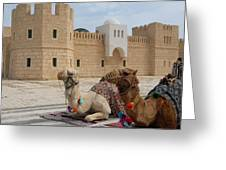 Camels Tunis Greeting Card