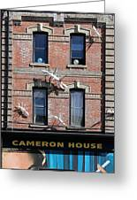 Cameron House 2 Greeting Card