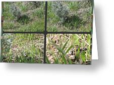 Camouflage Greeting Card