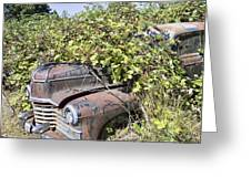 Camouflaged Car Greeting Card
