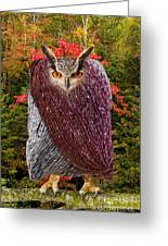 Camouflaged Owl Greeting Card