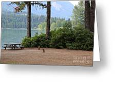 Camp By The Lake Greeting Card