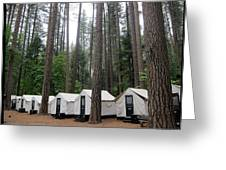 Camp Curry Greeting Card