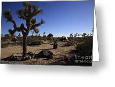 Camping In The Desert Greeting Card