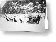 Canada Dog Sled, C1910 Greeting Card