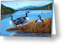 Canada Geese - Lake Lure Greeting Card