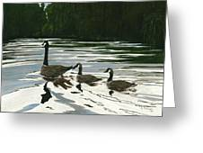Canadas On Wilson Lake Nc Greeting Card