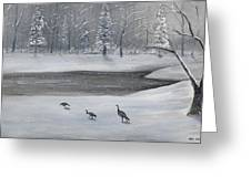 Canadian Geese In Winter Greeting Card