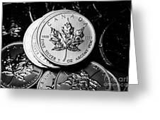 Canadian One Ounce Maple Leaf Silver Coins Greeting Card