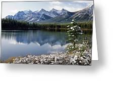 1m3541-canadian Peak Reflected In Herbert Lake Greeting Card