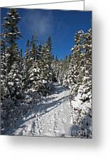 Canadian Winter Wonderland.. Greeting Card