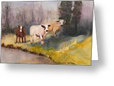 Canal Cows Greeting Card