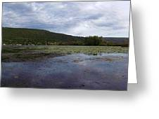 Canandaigua Lake Panorama Greeting Card