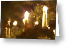 Candles Seen Through A Fir Tree Greeting Card
