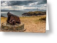 Cannon At Llanddwyn  Greeting Card by Adrian Evans