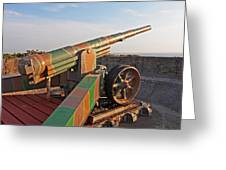 Cannon In Fortress Greeting Card