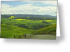 Canola Country Road Greeting Card