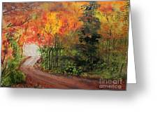 Canopy Of Colors Greeting Card