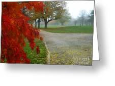 Cantiague Park  Greeting Card