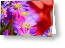 Canvas Flowers Greeting Card