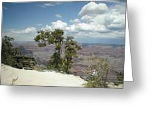 Canyon And Sky Greeting Card