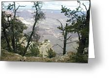 Canyon And Trees Greeting Card