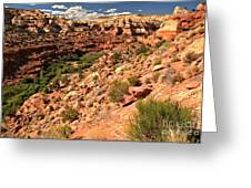 Canyon At Calf Creek Greeting Card