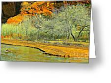 Canyon De Chelly - Spring I Greeting Card