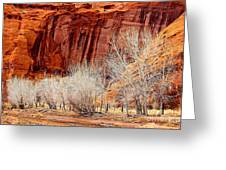 Canyon De Chelly - Spring II Greeting Card