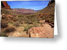 Bright Angel Trail, The Grand Canyon  Greeting Card