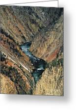 Canyon Jewel Greeting Card