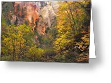 Canyon Kaleidoscope  Greeting Card by Peter Coskun
