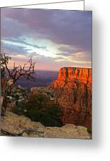 Canyon Rim Tree Greeting Card