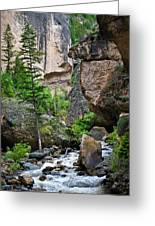 Canyon Serenity - Crazy Woman Creek - Crazy Woman Canyon - Johnson County - Wyoming Greeting Card